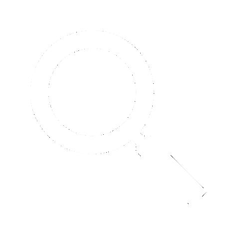 BU search